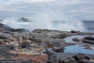 Tyrskyjä Sombrero Chino -saarella