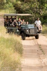 Safariajelulla