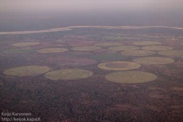 Keinokasteltuja viljelyksiä Madgaskarilla
