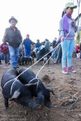 Maalaismarkkinoilla, Otavalo