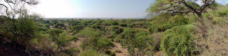 Manyara_Panorama3