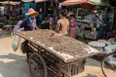 Markkinoilla: kotiloita kaupan, Siem Reap/Kamputsea