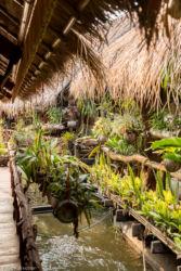 Bambulauttahotelli, Thaimaa
