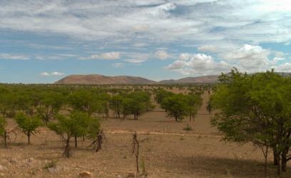 Serengeti_HDR4