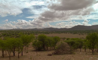 Serengeti_HDR5