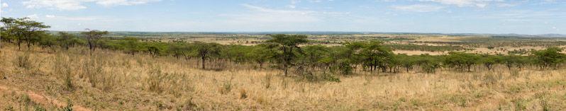 Serengeti_Panorama2
