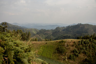 Näkymä lounais-Ugandassa